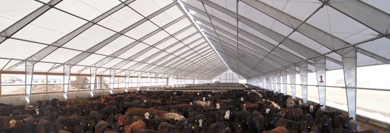 Tensoestructura para almacen de carne de res