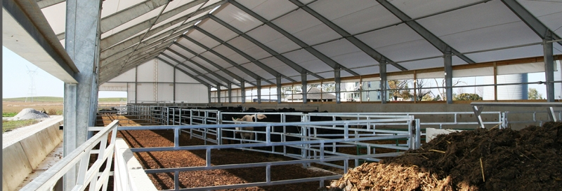 Tensoestructuras con paredes laterales sin cobertura para ganados