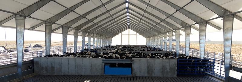 Diseno y construccion de tensoestructura con espacios abiertos y ventilados para el ganado